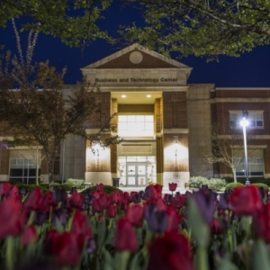 Business Building at night, red tulips growing out front